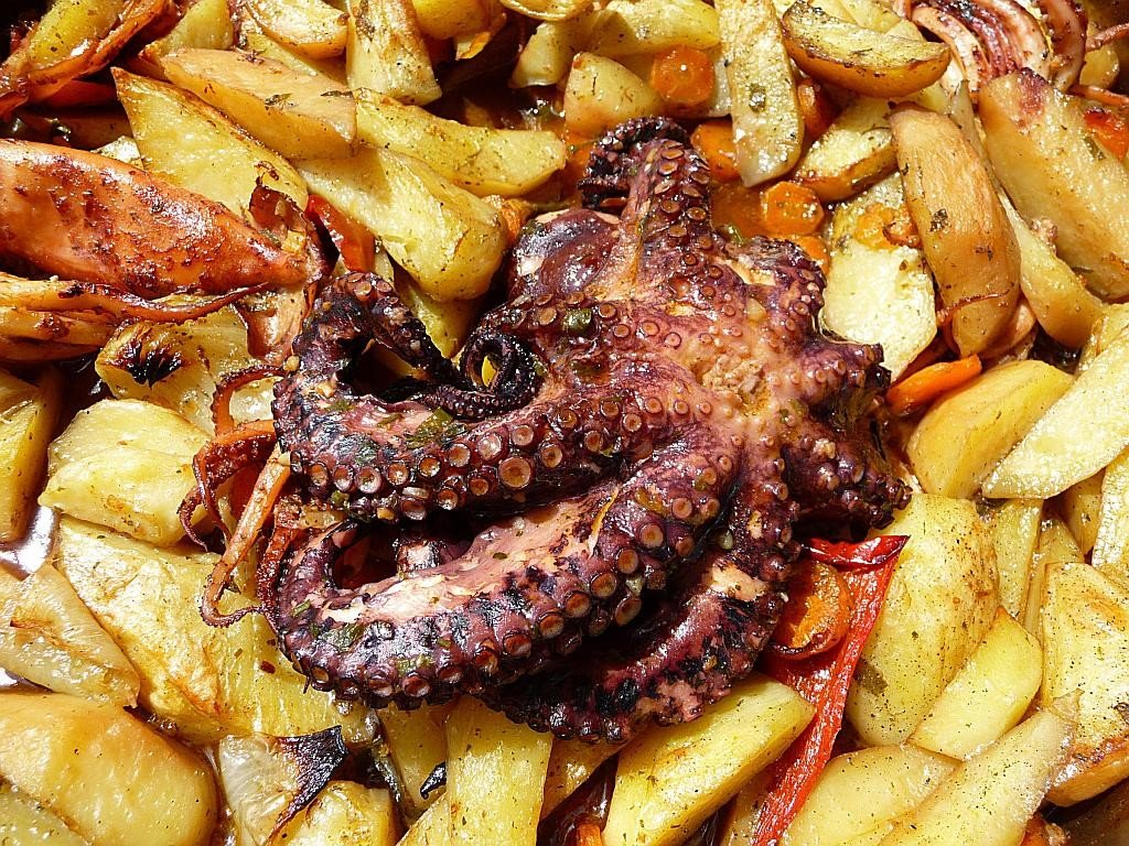 "Octopus ""Under the bell"" is a must try on the Eco sailing tour"